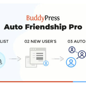 BuddyPress Auto Friendship Pro